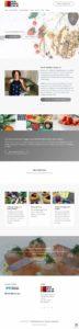 Full Front Wordpress Website View